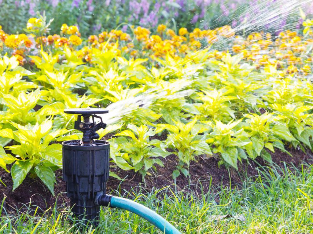 grapevine-landscapers-irrigation-installation-and-repairs-1_orig