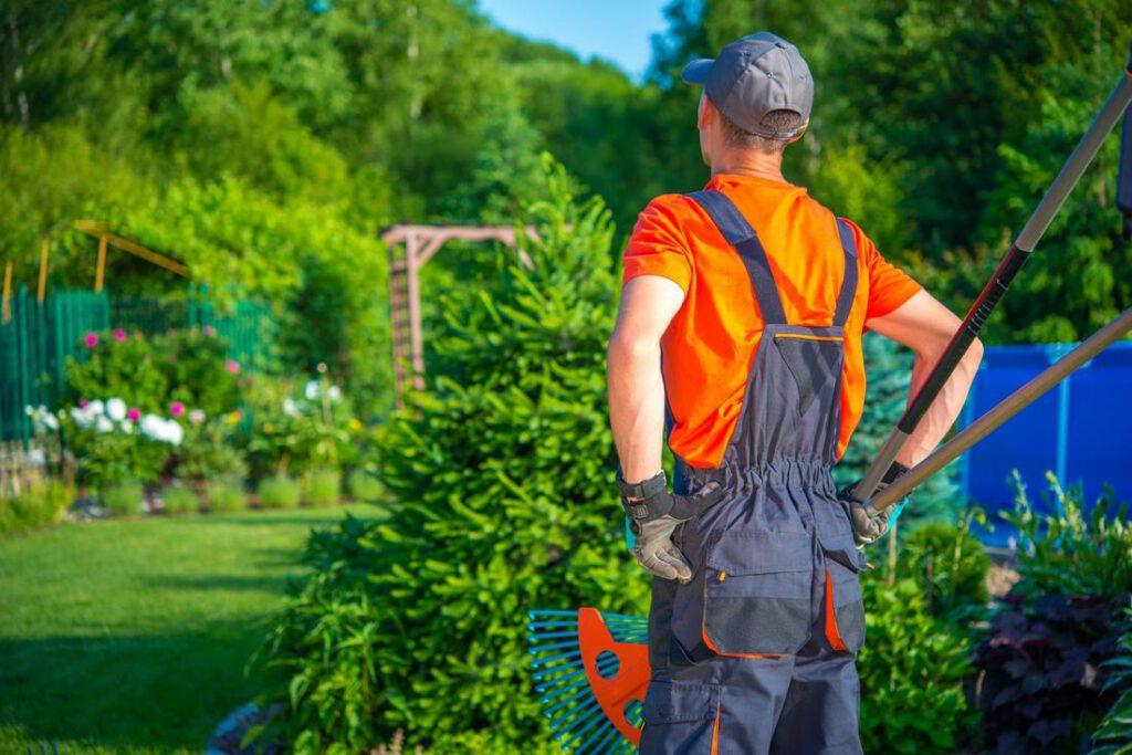 Residential & Commercial Landscape Maintenance